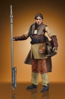 STAR_WARS_THE_VINTAGE_COLLECTION_FIGURE_-_Leia_Boushh_(PhotoReal_2).jpg