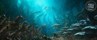 Aquaman-Movie-Images-06.jpg