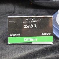 Megaman-04.jpg