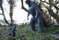 Godzilla-King-Of-Monsters-13.jpg